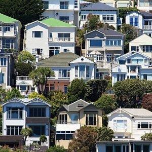 Wellington_houses