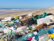 Plastic plague – Plastic waste on beach